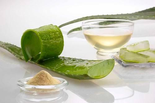 Применение сока и мякоти листьев алоэ против прыщей на лице